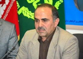 جشنواره برداشت گل محمدی در مرند برگزار می گردد