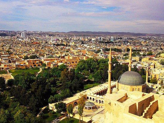 اردوغان: هدف ترکیه جذب 50 میلیون گردشگر در سال جاری است