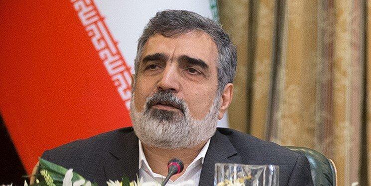کمال وندی:تا دو سال آینده در تعمیرات نیروگاه اتمی بوشهر بی احتیاج می شویم، روسیه 38 تن سوخت به نیروگاه بوشهر داده است