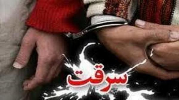 سارقان خانه های نازی آباد تهران به دام افتادند